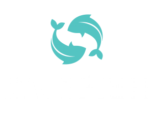 beach-fish-footer-logo