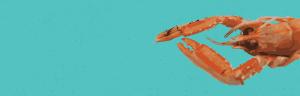 Brighton fish lobster background scroll beach fish