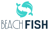 Beach Fish Eastbourne | Brighton Fish & Sussex Seafood